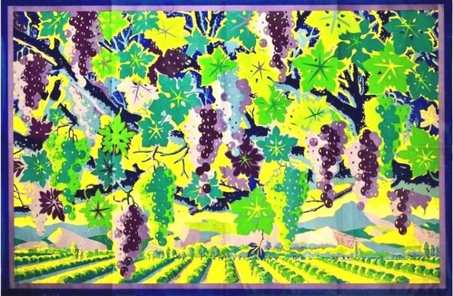 Vines of Australia EMB 1926