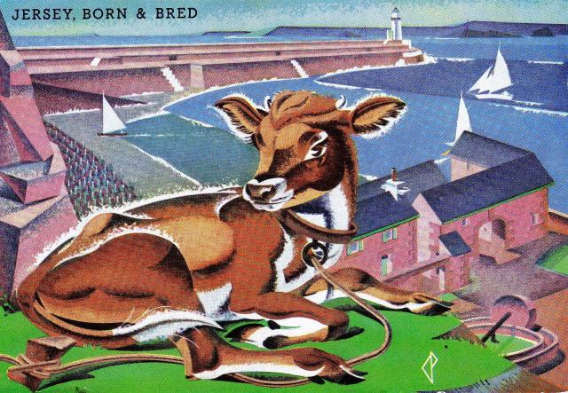 Jersey Born and Bred - post card Cow