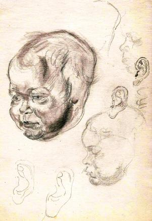 Baby face studies Paine (4)