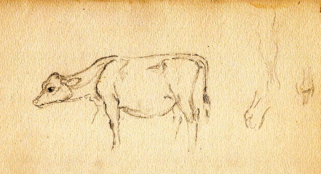 Cow Studies 3 Paine