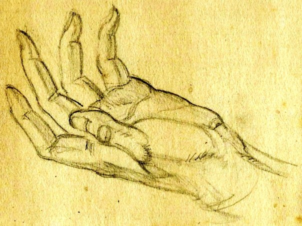 Hands pencil studies Paine (3)