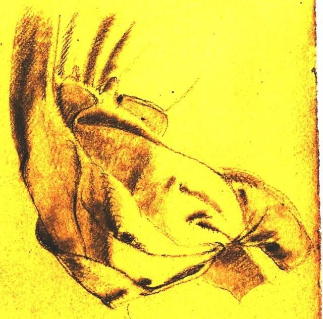 Paine drapery study